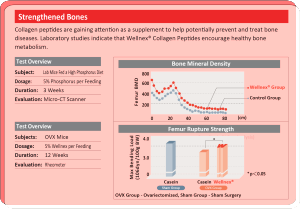 Wellnex Bone Health Study