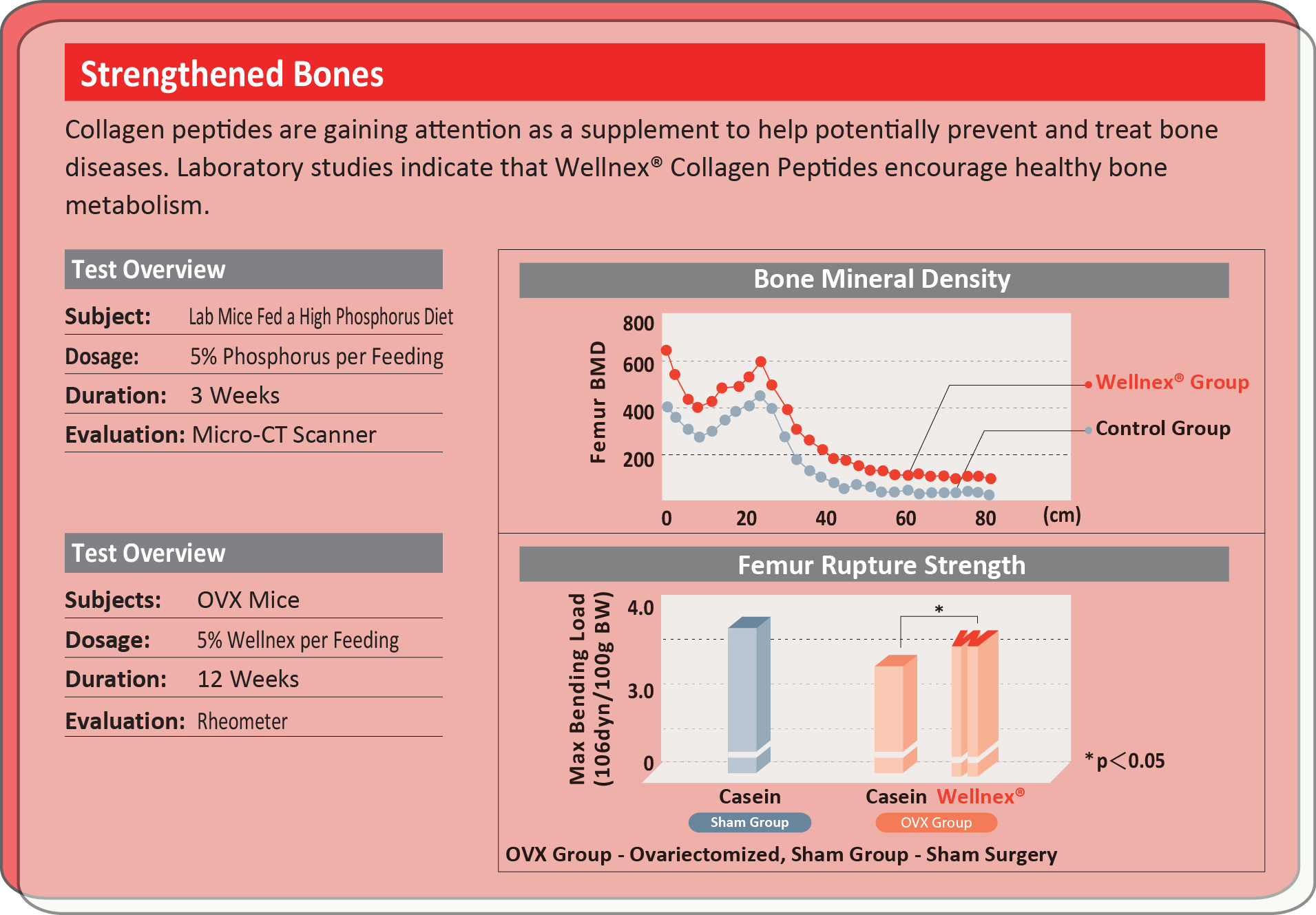 collagen analysis Table 2 total south east asia collagen market: impact analysis of market restraints (2018–2023) table 3 south east asia collagen market size, by product type, 2016-2023 (usd million) table 4 gelatine market size, by country, 2016-2023 (usd million).