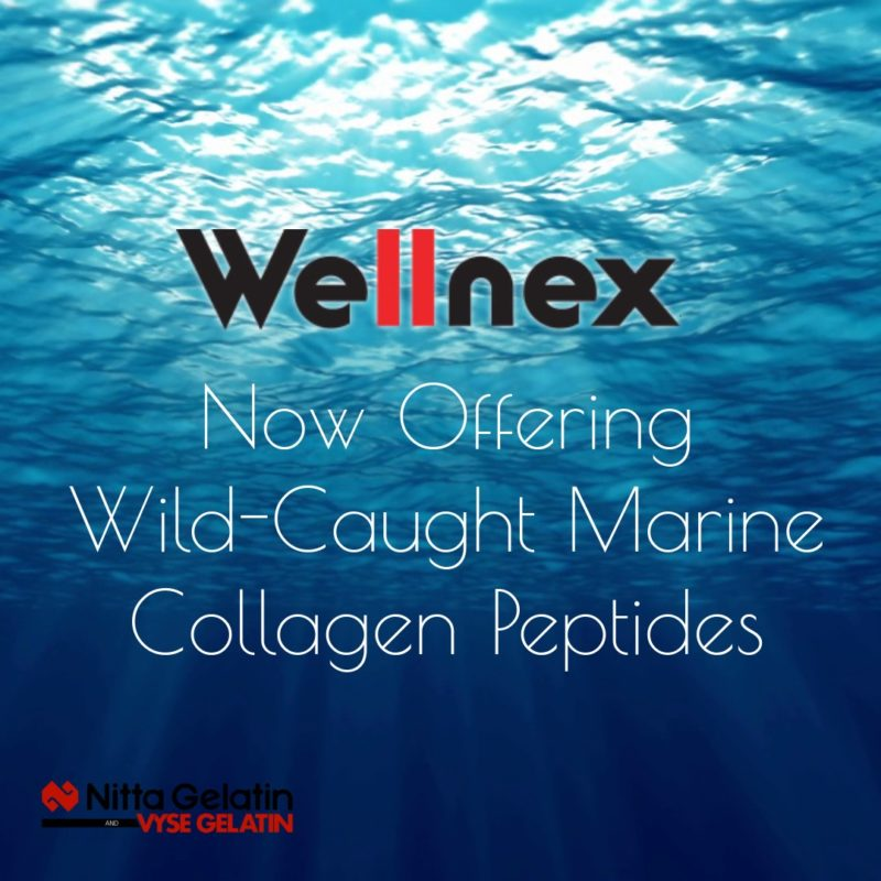 "Graphic reading ""Wellnex, now offering wild-caught marine collagen peptides"" over backdrop of ocean, with Nitta Gelatin logo in lower left corner."